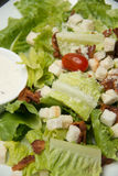 Krutonger för Caesar sallad, bacon, parmesanost och Caesar dres Arkivbild