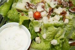Krutonger för Caesar sallad, bacon, parmesanost och Caesar dres Fotografering för Bildbyråer