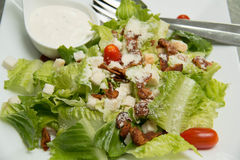 Krutonger för Caesar sallad, bacon, parmesanost och Caesar dres Royaltyfri Fotografi