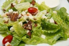 Krutonger för Caesar sallad, bacon, parmesanost och Caesar dres Arkivbilder