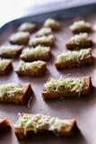 Krutonger för svart bröd, ost med kryddor rostat bröd på ugnen royaltyfri bild