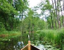 Krutynia-Fluss 3 Lizenzfreies Stockfoto