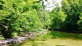 Krutynia-Fluss 11 Stockfotografie
