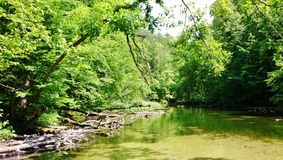 Krutynia rzeka 11 Fotografia Stock