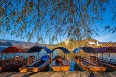 Krwawiący przy jeziorem Krwawiącym, Slovenia - Tradycyjne czerwieni, pomarańcze i błękita Pletna łodzie w jesieni świetle słonecz Fotografia Royalty Free