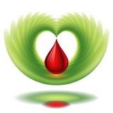 Krwi skrzydło i kropla Zdjęcia Royalty Free