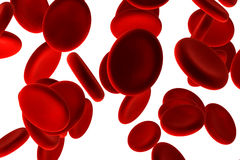 krwinki czerwone obraz stock