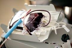 Krwionośna torba Obrazy Stock