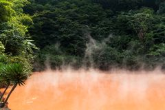 Krwionośni stawowi hotsprings w Beppu Japonia Obrazy Stock