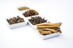 krydda för fem sorteringar Royaltyfria Bilder