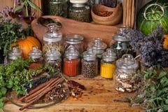 krydda för ingrediens för örtar för basilikamat växande royaltyfri bild
