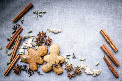 Krydda för kryddnejlika för ingefära för ljusbrun för stjärnaanis muskotnöt för kardemumma kanelbrun arkivfoton