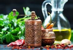 Krydda och olja royaltyfria foton