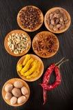 Kryddachili, gurkmeja, anis, muskotnöt och carda Arkivfoto