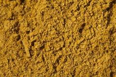 Kryddacurry Royaltyfri Bild
