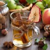 Kryddad äppelcider i exponeringsglas royaltyfri foto