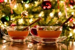 Kryddad bourbonäppelcider för ferie fotografering för bildbyråer