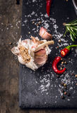 Kryddar bakgrund med vitlök, den röda chili, örter, saltar och pepprar Royaltyfri Bild