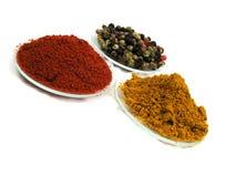 kryddar kryddigt royaltyfria foton