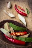 kryddar kryddigt Arkivfoto