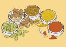 Kryddar mat stock illustrationer