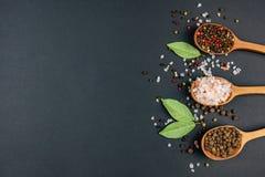 kryddar spoonfuls tre royaltyfri fotografi