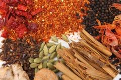 kryddar variation royaltyfri foto