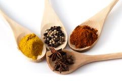 kryddar variation Arkivfoto