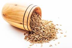 Kryddaspiskummin i en träbunke Arkivfoton