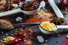 Kryddaval från lite varstans världen Royaltyfria Foton