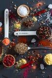 Kryddaval från lite varstans världen Arkivfoton