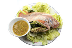Kryddig ångad fisk Arkivfoton