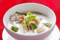 Kryddig ckhicken-curry i kokosnöt mjölkar Arkivfoto