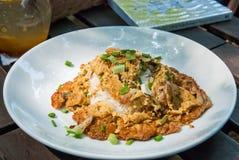 Kryddig finhackad grisköttomelett med ris Arkivbilder