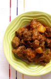 kryddig indisk lamb för currymat royaltyfri fotografi