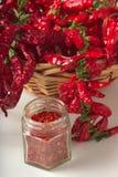 Kryddig jordning för röd peppar i den glass kruset, med sunda torkade peppar i korgen Royaltyfri Bild
