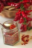 Kryddig jordning för röd peppar i den glass kruset, med sunda torkade peppar i korgen Royaltyfri Fotografi