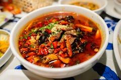 Kryddig mat för Sichuan stil Arkivfoto
