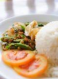 Kryddig mat för thailändsk stil Royaltyfri Foto