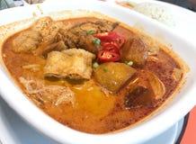 Kryddig nudelsoppa för asiatisk curry royaltyfri fotografi