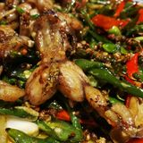 Kryddig oxgroda Chongqing Style Food Arkivbilder