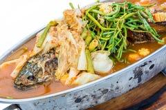 Kryddig soppa för frasig orm-huvud fisk. Det är en thailändsk kokkonst. Royaltyfri Foto
