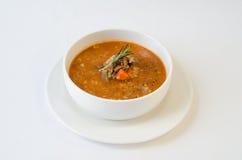 kryddig soup Arkivbilder