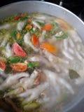 kryddig soup Royaltyfria Bilder