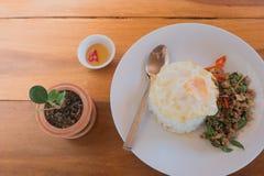 Kryddig stekt kyckling med basilikabladet på ris och det stekte ägget Royaltyfria Bilder
