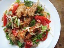 Kryddig stekt kycklingsallad Fotografering för Bildbyråer