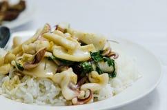 Kryddig thai maträtt royaltyfri bild