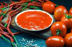 kryddig tomat för sås Royaltyfri Foto