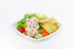 kryddig tonfisk för sallad Royaltyfri Fotografi