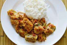 Kryddig uppståndelse stekte aubergine och chili för fiskboll med ris Royaltyfri Bild